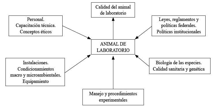 elemento laboratorio mundo: