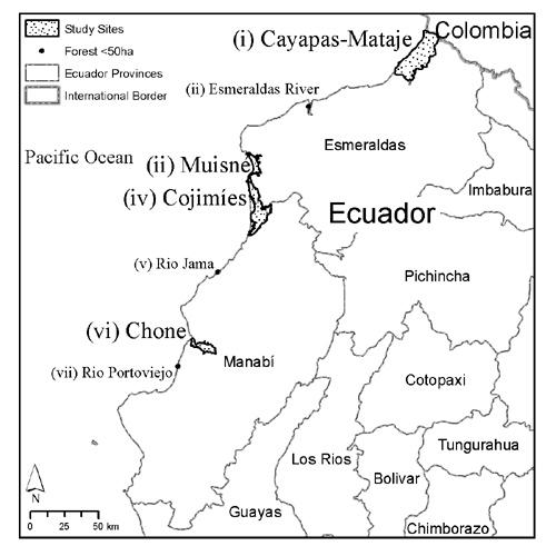 research paper estuaries