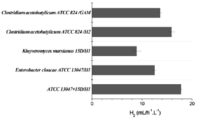 biohydrogen production using microbial electrolysis cell Bioelectrochemical production of hydrogen in an innovative pressure-retarded osmosis/microbial electrolysis cell system: experiments and modeling.