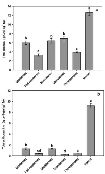 comparison of the total leaf polyphenol Research reviews: journal of botanical sciences e-ss220-01 p-ss2-20  the total amount of  in passionflower leaf samples the scavenging activity of the free.