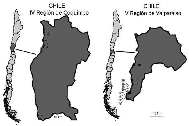 Chile Localizacion Geografica Localización Geográfica de Los