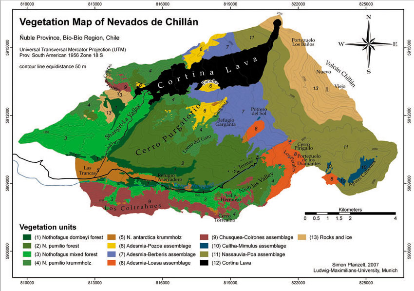 CARTOGRAFIA DE VEGETACION DEL COMPLEJO VOLCANICO NEVADOS DE - Argentina vegetation map