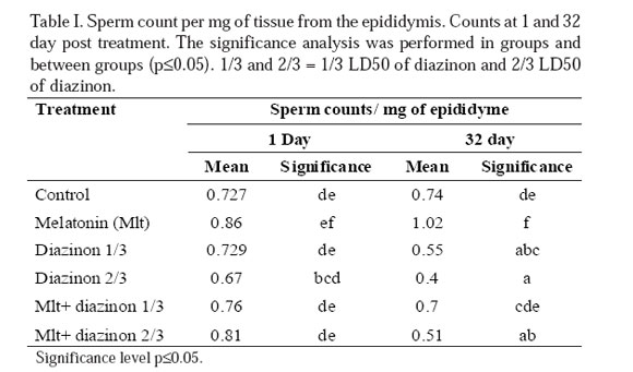 Normal sperm counts in men