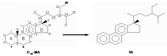 Evaluaci n de esteroides arom ticos como indicadores de for Roca termica
