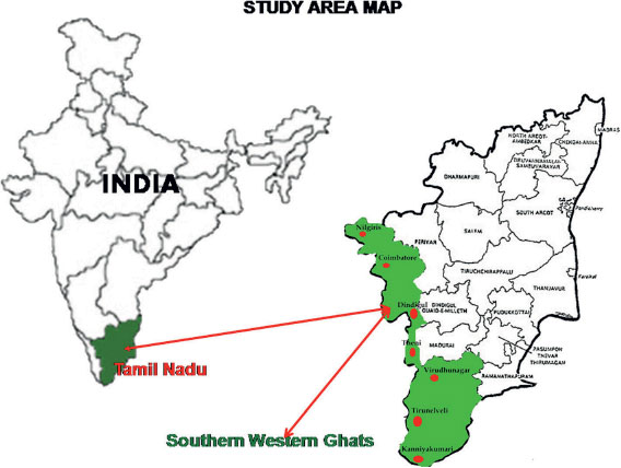 western ghat and eastern meet at the barre