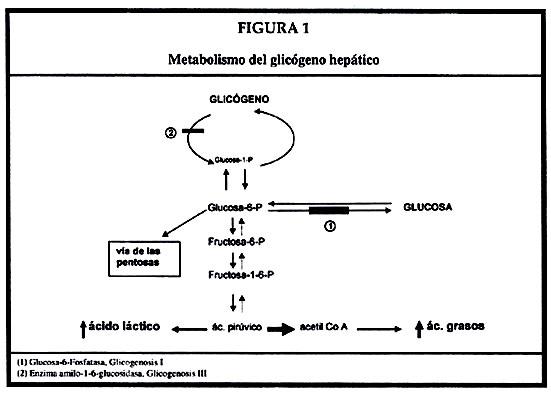 efectos nocivos del acido urico pastillas para bajar acido urico medicamentos para prevenir ataques de gota