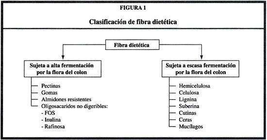 EL ROL DE LA FIBRA DIETÉTICA EN LA NUTRICION ENTERAL