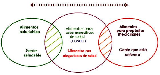 segmentacion de mercado pdf