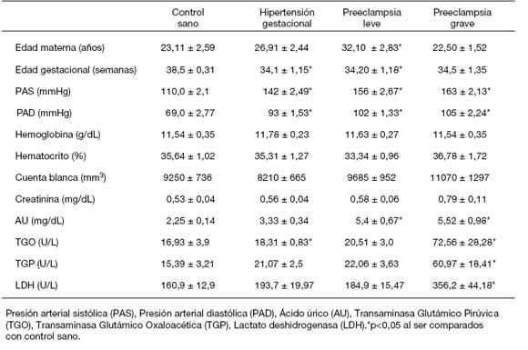 horario de dieta de acido urico y colesterol alto comidas anti acido urico cristales de acido urico en parcial de orina