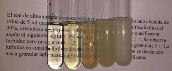 alto rendimiento cl u00ednico entre albuminuria