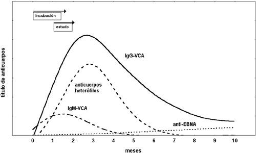 corticosteroides orales pdf