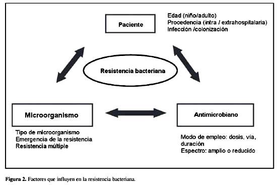 Staphylococcus aureus - Food-Info