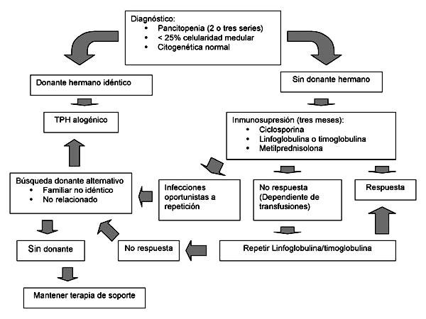 Si es la náusea a sheynom la osteocondrosis