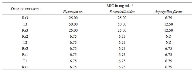 Actividad antifºngica de extractos de Crotalaria longirostrata